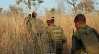 ZIMBABWE: All-female rangers unit achieves unexpected success ©AkashingaShutterstock