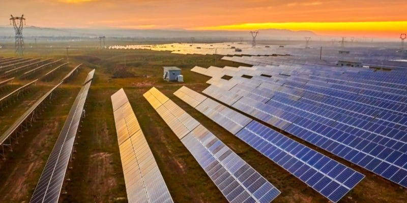 EGYPT: Scatec Solar connects 4th photovoltaic solar power plant to Benban ©Jenson/Shutterstock