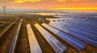 ÉGYPTE : Scatec Solar connecte sa quatrième centrale solaire photovoltaïque à Benban©Jenson/Shutterstock