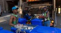 GABON : Averda suspend la collecte des déchets à Libreville pour arriérés non payés©Kevinspired365/Shutterstock