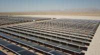 MALI : Akuo Energy connectera la centrale solaire de Kita (50 MW) en février 2020©Sebastian Noethlichs/Shutterstock