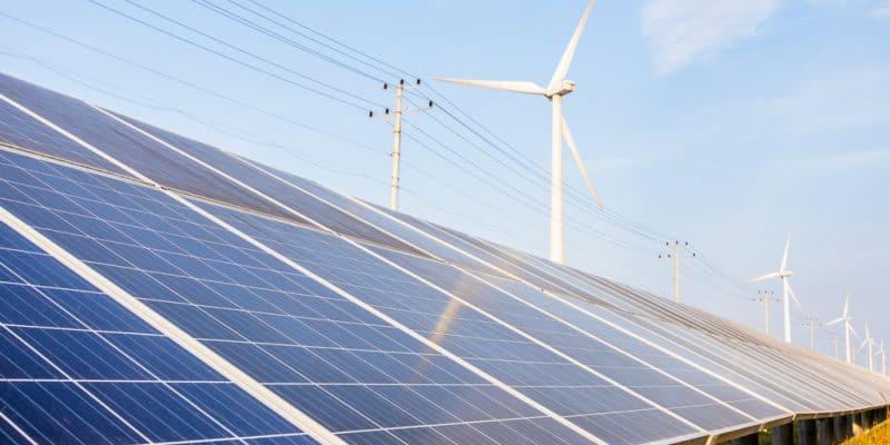 ZAMBIE : une étude de faisabilité de WSP USA pour un projet hybride de 150 MW©HelloRF Zcool/Shutterstock