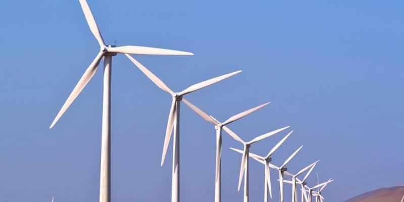 SENEGAL: Taïbe Ndiaye wind power plant delivers its first 50 MW©sezer66/Shutterstock