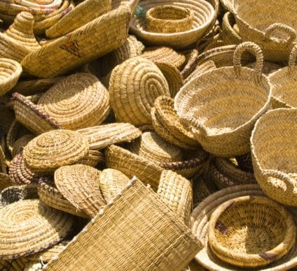 TOGO: Eco-friendly business grows around willow ©DoinShutterstock