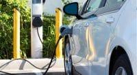 AFRIQUE DU SUD : Nissan, BMW et VW à l'assaut du marché des véhicules électriques ©Mike Flippo/Shutterstock