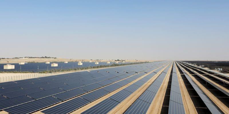 ÉGYPTE : EDF et Elsewedy Electric connectent deux parcs solaires de 130 MW à Benban©Dominic Dudley/Shutterstock
