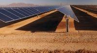 EGYPT: NREA chooses Intec as supervisor of Zafarana's solar project©wadstock/Shutterstock