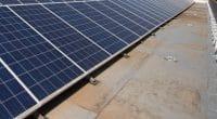 NIGERIA : la conférence Future Energy à Lagos se met au vert©Kevinspired365/Shutterstock