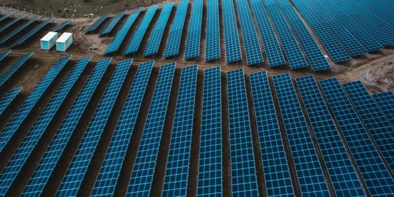 NAMIBIE/BOTSWANA : une alliance pour un mégaprojet solaire de 5000 MW©yunus tokmakoglu/Shutterstock