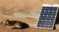 AFRIQUE : Bboxx lève 50 M$ pour distribuer les kits solaires à domicile©MyImages - Micha/Shutterstock