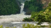 UGANDA: Government cancels Murchison Falls hydroelectric project©FCG/Shutterstock
