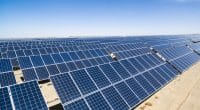 ALGERIA: Condor selected to build 50-megawatt solar power plant©zhu difeng/Shutterstock