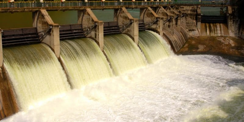 NIGERIA: Government allocates $5.5 million for the Mambilla mega hydroelectric project©Belinda Pretorius/Shutterstock