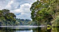 GABON: Meridiam signs PPP for Kinguélé Downstream hydroelectric project©Oleg Puchkov/Shutterstock