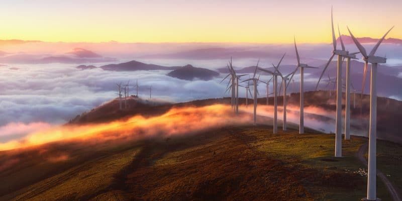 EGYPT: Siemens wins construction contracts for 2 wind farms of 500 MW©Mimadeo/Shutterstock