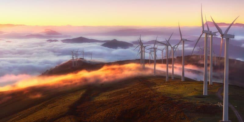 ÉGYPTE : Siemens décroche les contrats de construction de 2 parcs éoliens de 500 MW©MimadeoJen/Shutterstock