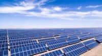 TCHAD : la BAD finance la première phase du projet solaire de Djermaya avec 18 M€©zhangyang1357699723/Shutterstock