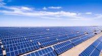 ÉGYPTE : Voltalia connecte une centrale solaire photovoltaïque de 32 MW à Benban©zhangyang13576997233/Shutterstock
