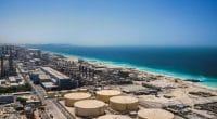 ÉGYPTE : Acwa Power veut construire une usine de dessalement de l'eau de mer ©Stanislav71/Shutterstock