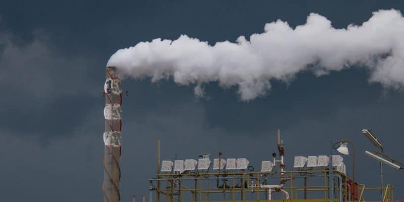 ÉGYPTE : TCG signe avec le gouvernement pour des usines d'incinération de déchets© zulkamalober/Shutterstock