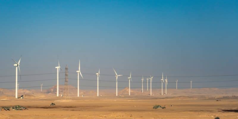 NAMIBIA: NamPower to invest $68 million to develop 2 wind energy projects©Octofocus2/Shutterstock