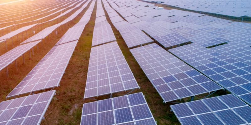 GAMBIA: Sahay Solar wants to build a solar power plant in the country©city hunter/Shutterstock