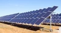 ÉGYPTE : Acwa Power décroche un contrat pour 200 MWc d'énergie solaire à Kom Ombo©Iakov Filimonov/Shutterstock