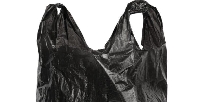 ALGÉRIE : les sachets plastiques de couleur noire seront interdits dès 2020©Anton StarikovShutterstock