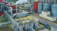 KENYA: Bamburi Cement relies on biomass to reduce costs of production©Stockr/Shutterstock
