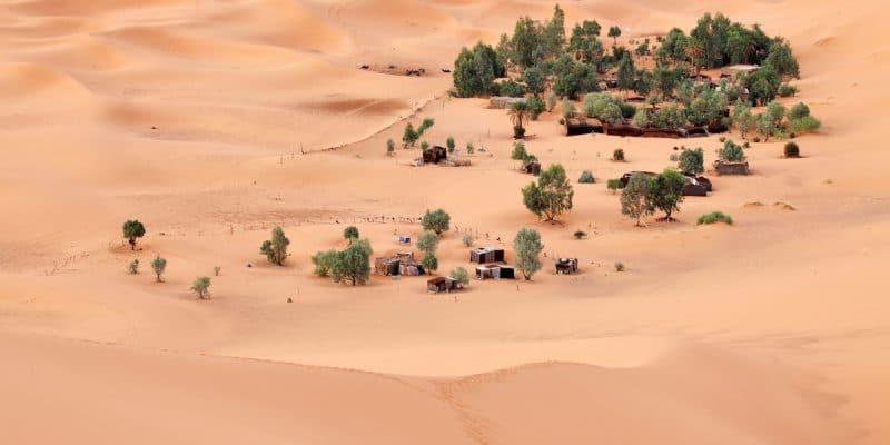 TUNISIE : la participation à la COP 25 est axée sur la préservation des oasis©Vladimir MelnikShutterstock