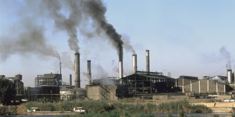 SENEGAL: Fish meal factory causes air pollution in Gandiol©Silent CornersShutterstock