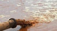 KENYA : les gouvernements locaux en première ligne contre la pollution du lac Victoria© WvdMPhotography/Shutterstock