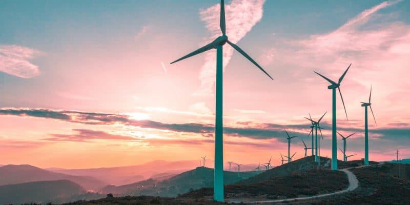 ÉGYPTE : Engie et ses partenaires inaugurent leur parc éolien à Ras Ghareb©Space-kraft/Shutterstock