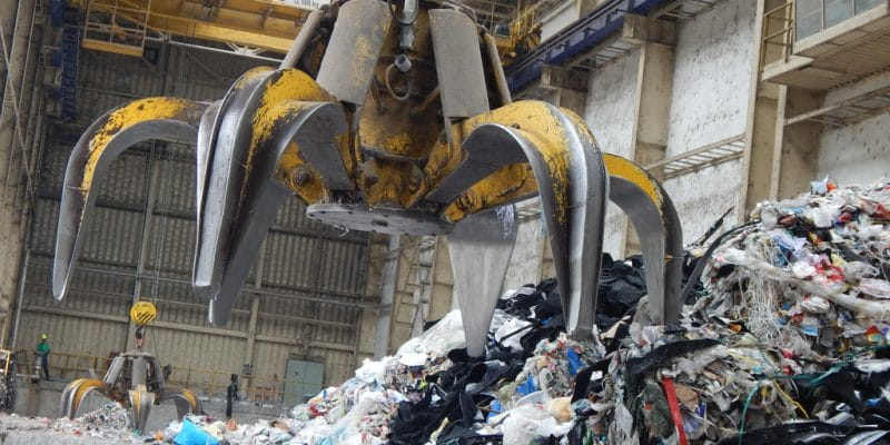 EGYPT: Government promotes waste-based electricity ©TadeasH/Shutterstock