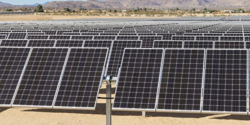 ÉGYPTE : Amea Power fournira 700 MW d'électricité à partir de sources renouvelables ©Tom Grundy/Shutterstock