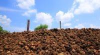COTE D'IVOIRE : signature du contrat de concession pour la centrale biomasse d'Ayebo©wattana/Shutterstock