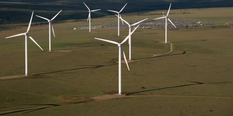 SÉNÉGAL : les professionnels des énergies renouvelables créent leur association©AngelCShutterstock