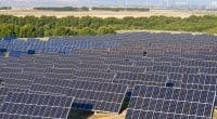 TOGO: BOAD finances Blitta's solar power plant with €10.7 million€©pedrosala/Shutterstock