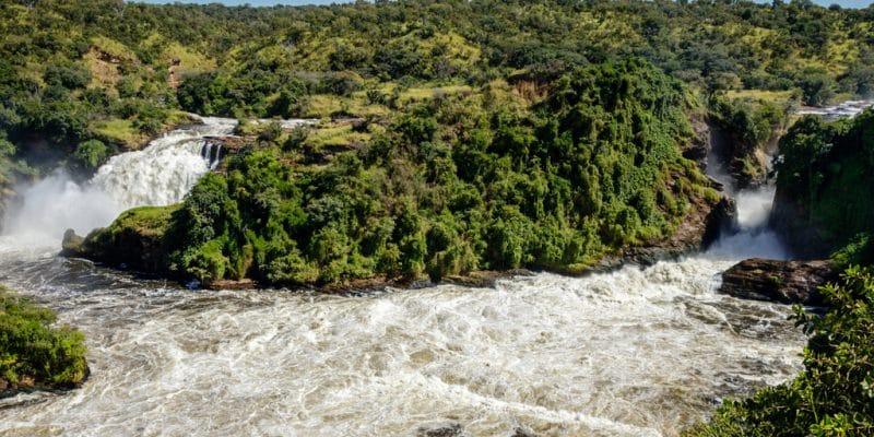 OUGANDA : le gouvernement relance le projet hydroélectrique sur les chutes Murchison©Dennis Wegewijs/Shutterstock