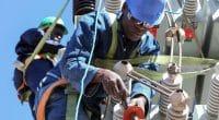 AFRIQUE DE L'OUEST : l'ADFD finance deux projets d'énergies renouvelables©Sunshine Seeds/Shutterstock