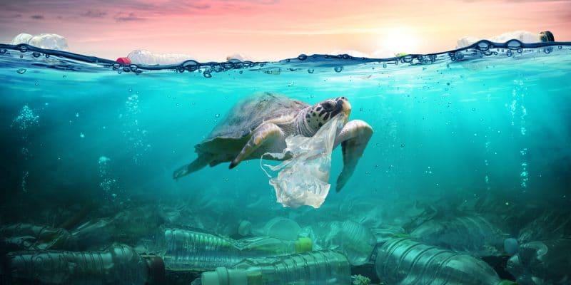 TUNISIE : la gestion des déchets de la Méditerranée préoccupe les pays voisins©Romolo TavaniShutterstock