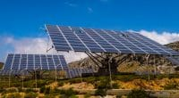 SOUTH AFRICA: Cenfura and C4D will provide mini-grids to 6,500 communities ©Philou1000/Shutterstock