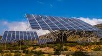 AFRIQUE DU SUD : Cenfura et C4D vont fournir des mini-grids à 6500 communautés ©Philou1000/Shutterstock