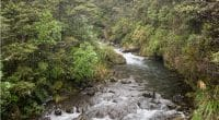 RWANDA: Empower signs PPA for Rucanzogera mini-hydro project©TTONN/Shutterstock
