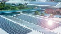 AFRIQUE DU SUD : SolarSaver dote Lynnwood Lane d'une minicentrale solaire à Pretoria©bit mechanic/Shutterstock