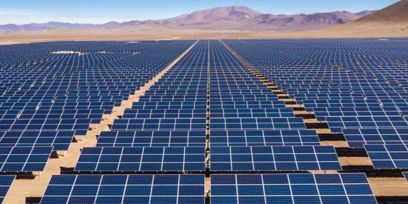 EGYPT: Two companies investigate West Nile solar project ©abriendomundo/Shutterstock