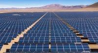 ÉGYPTE : deux entreprises pour l'étude d'un projet solaire dans le Nil occidental©abriendomundo/Shutterstock