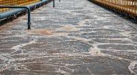 MAROC : les eaux usées de la nouvelle station d'épuration de Safi seront réutilisées©DedMityay/Shutterstock