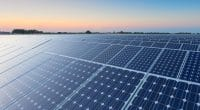 MOZAMBIQUE : Efacec décroche la construction (EPC) de la centrale solaire de Metoro ©PriceM/Shutterstock