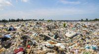 SÉNÉGAL : Macky Sall ordonne la réhabilitation de la décharge de Mbeubeuss© KARNT THASSANAPHAK Shutterstock